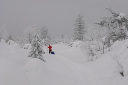 Laponie, Finlande - C. Molinier / Chiloé (Trek raquettes à neige) chiloe voyages