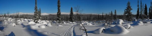 Laponie, Finlande, randonnée à pied, raquettes à neige, voyages découverte, trekking, chiloe-voyage.fr