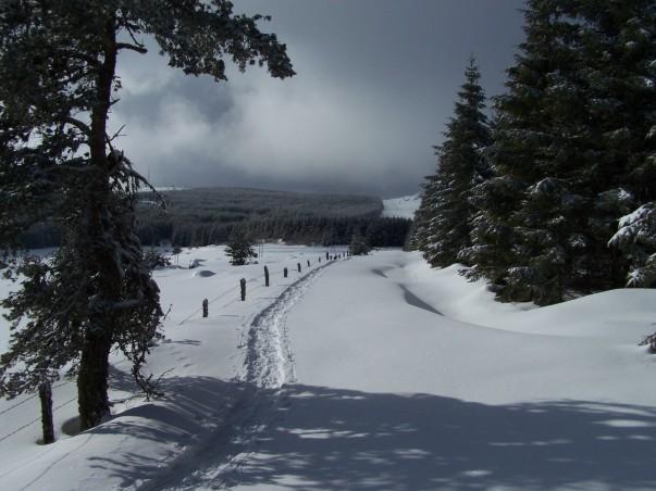 Margeride. Lozère. Randonnées à raquettes à neige. Séjours. Voyages. Randonnées à pied. Massif Central. Europe. Chiloé. www.chiloe-voyage.fr